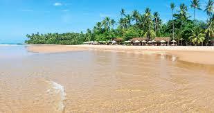 Pourquoi choisir le Brésil lors de vos prochaines vacances ?