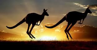 3 destinations phares pour un voyage au pays des kangourous