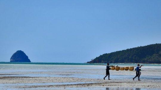 Pourquoi partir à la découverte de l'Afrique via une croisière au beau milieu de l'océan Indien ?