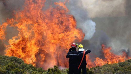 Les formations en incendie à la Réunion