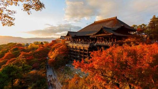Les 4 lieux les plus beaux et les plus visités au Japon
