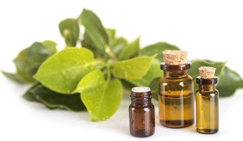 Comment utiliser les huiles essentielles pour contrer les maux de l'hiver ?