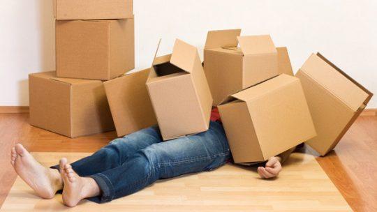 Comment faire pour trouver des informations relatives à l'établissement d'un devis de déménagement ?